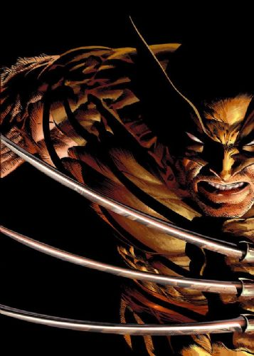 WOLVERINE - BLACK canvas print - self adhesive poster - photo print